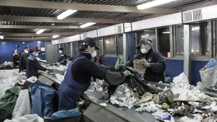Регоператор планирует установить 1800 контейнеров для раздельного сбора в Архангельской области