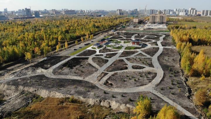 «Кругом грязь и рабочие»: тюменцы рассказали, почему разочаровались в новом парке Дружбы