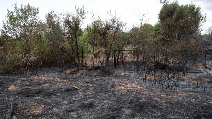 В Волгоградской области потушили крупный степной пожар