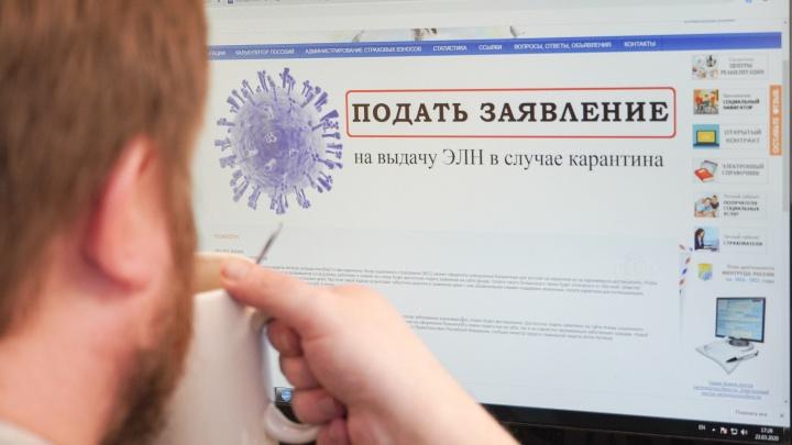«Первая выплата придёт через семь дней»: в Ярославле запустили сервис для ухода на самоизоляцию