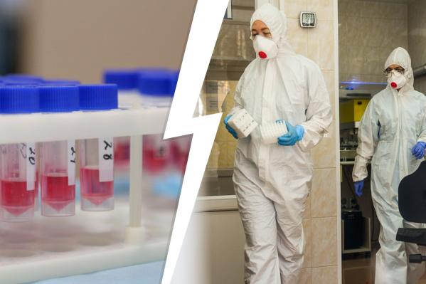 Основной инструмент исследования ученых — тест на антитела, которые появляются на вторую-четвертую неделю болезни