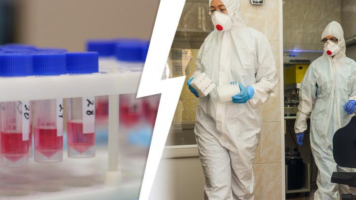 Академики РАН выяснили, сколько тюменцев обладают иммунитетом к COVID-19