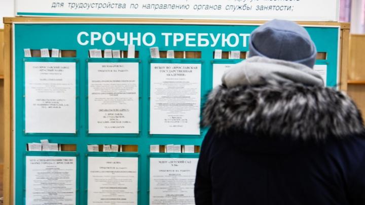 Оторвут с руками: в ярославской службе занятости назвали самые востребованные профессии