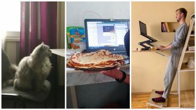 Екатеринбуржцы в своих хоум-офисах строят суперстолы, пекут блины и борются за стул с котиками