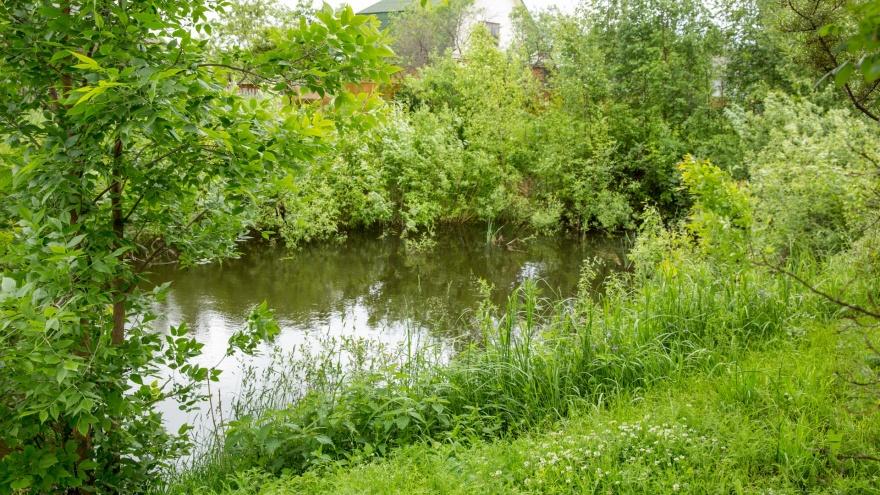 Нашли в пруду тело и велосипед: в Ярославской области утонул 6-летний мальчик
