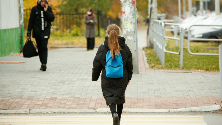 Министр образования объяснил необходимость двухнедельных каникул для челябинских школ