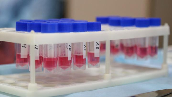 В Башкирию поступила новая партия вакцины от COVID-19