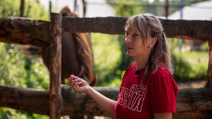 Кто спасает коней, которых отдают на мясо за смешные долги и бросают после побед в Европе. Репортаж из приюта