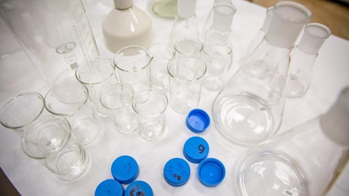 Нобелевская премия за открытие гепатита С — какое отношение к исследованию имеют новосибирские вирусологи