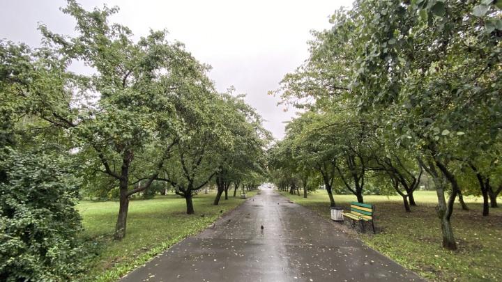 Чтобы не повторять ошибок: жителей Екатеринбурга позвали обсудить проект реконструкции парка Чкалова