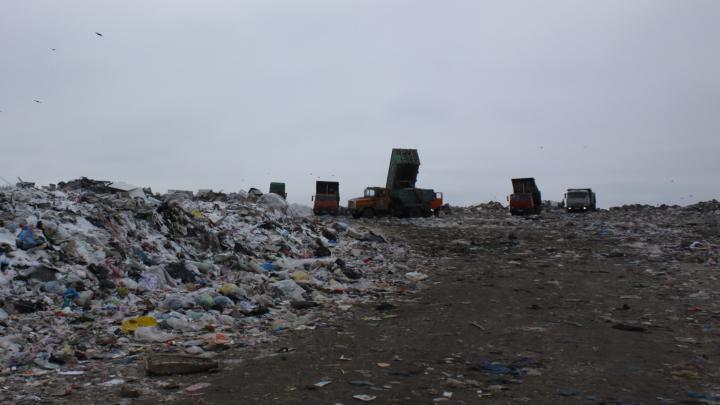 «Не учитывают вес мусора»: стали известны итоги проверки полигона твердых отходов под Самарой