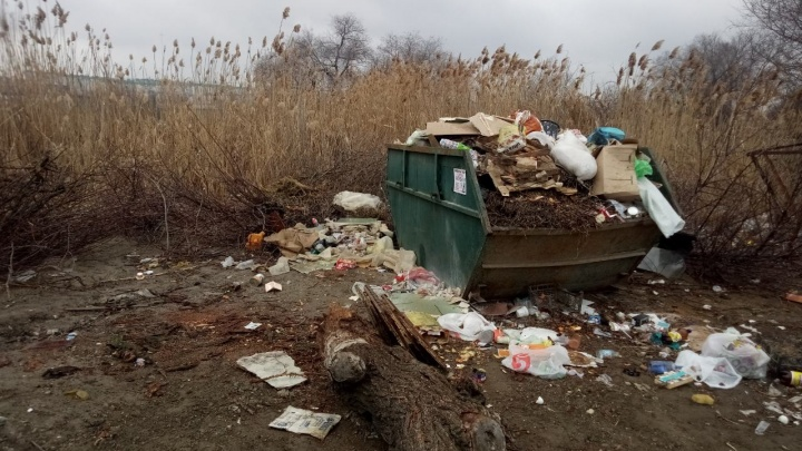 «У нас снова проблемы, товарищи!»: волгоградские дворы в очередной раз обрастают мусором