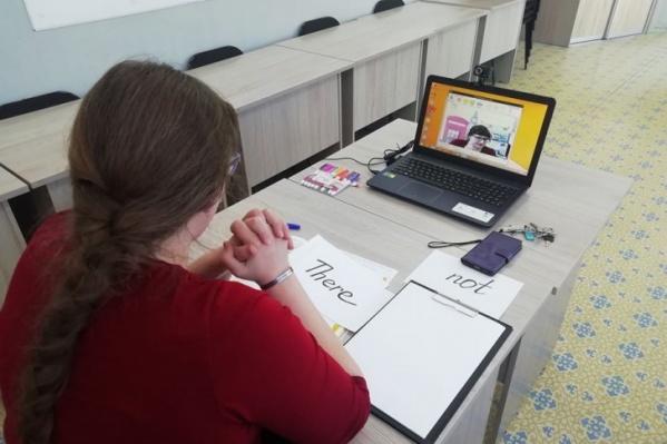 Учителя готовятся вести уроки через интернет