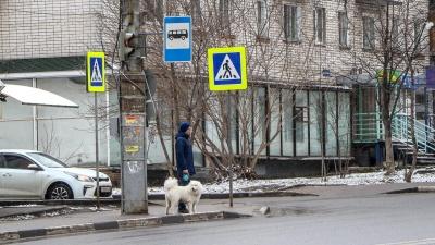 Власти дали пошаговые инструкции, как нижегородцам выходить из дома
