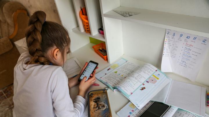 В Башкирии закупили 500 планшетов для школьников