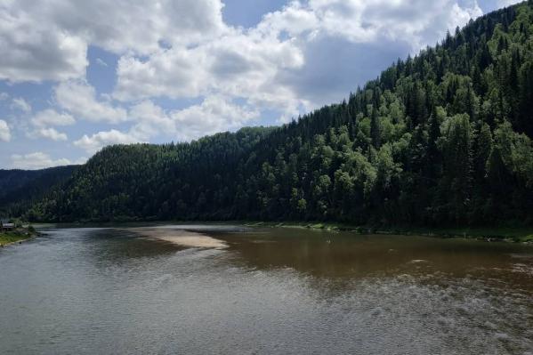 Из-за работы золотодобытчиков вода в реках становится жёлтой и мутной