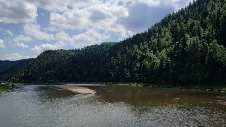 Власти прокомментировали помутнение рек в Кузбассе из-за золотодобытчиков
