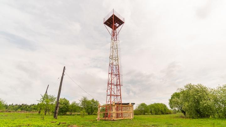 Прикамскую деревню, в которой дети лазили на вышку, чтобы отправить домашку, подключили к интернету