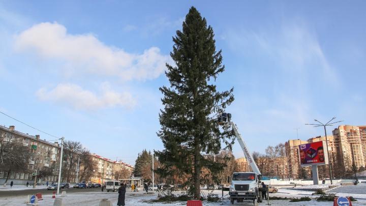 В Уфе новогоднюю елку поставили посреди парковки