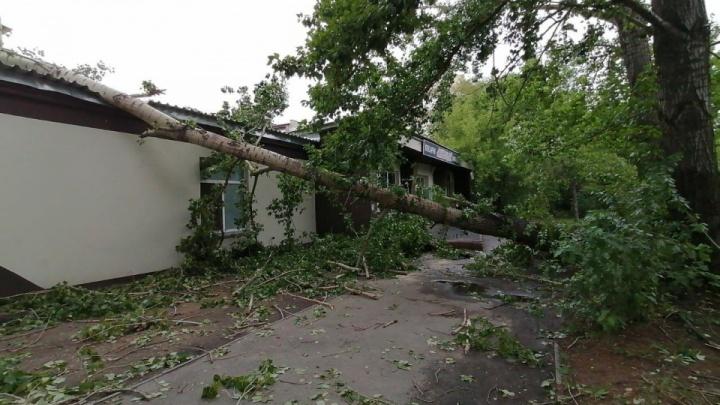 Ураган в Металлургическом районе повредил 13 машин, двоим мужчинам понадобилась медпомощь