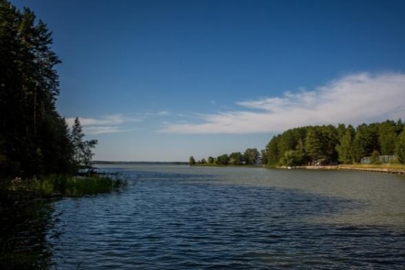 В Новосибирской области рыбак упал за борт моторной лодки и погиб. Следователи начали проверку