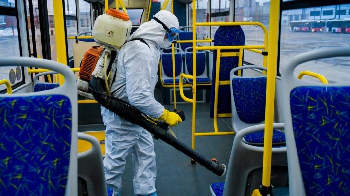 Общественный транспорт в Перми стали обрабатывать специалисты-дезинфекторы