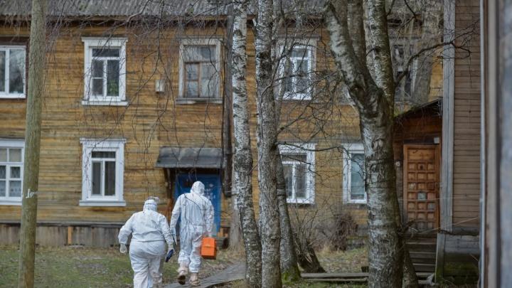 Оперштаб России подтвердил 345 новых случаев COVID-19 в Архангельской области