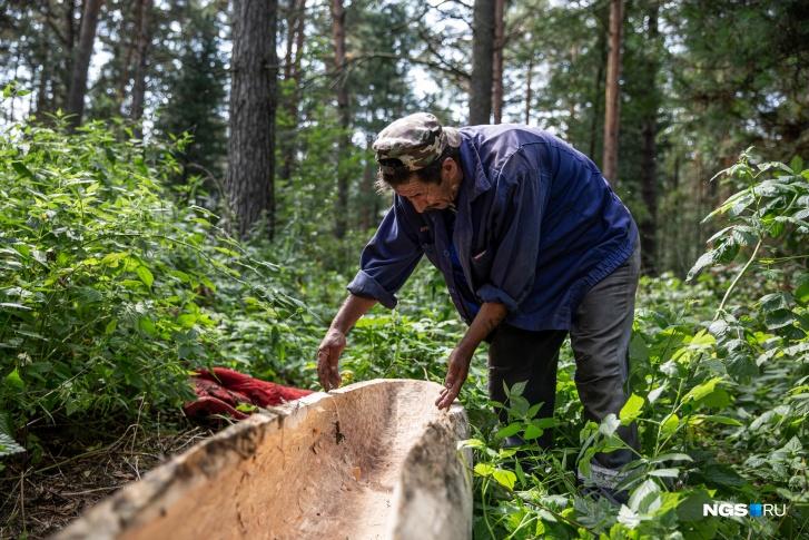 Прямо сейчас Гумар работает над очередной долблёнкой. Хранит её в лесу рядом с домом и заботливо накрывает брезентом, чтобы та не отсырела<br>