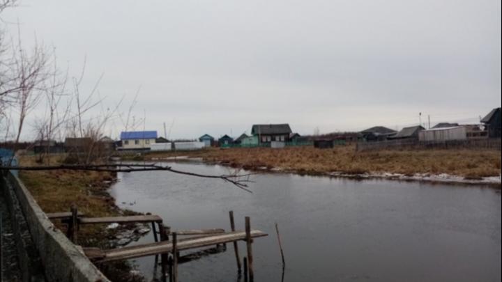 «Рыба до сих пор токсична». Запрет на добычу карасей в озере Андреевское планируют продлить