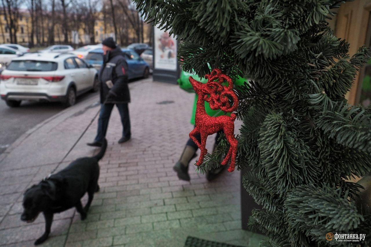 Подготовка к Новому году выдалась бесснежной, но город не сдавался. Санкт-Петербург, 11 декабря 2019 года