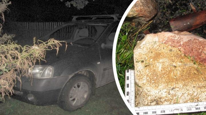 «Стала просто невыносима»: в Ярославской области в лесу обнаружили тело дачницы