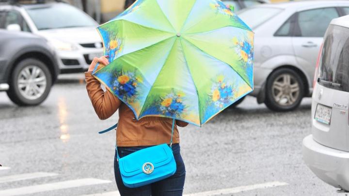 На природу только в дождевиках: прогноз погоды, который испортит ваши планы на выходные