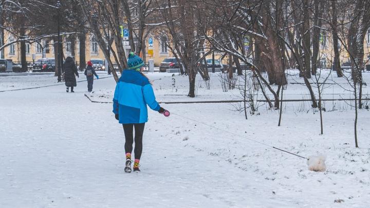 Когда морозы в Прикамье закончатся? Отвечают в ГИС-центре ПГНИУ
