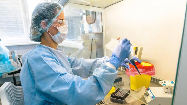 В Перми начали тестировать на антитела к коронавирусу. Рассказываем, где и что это за методика