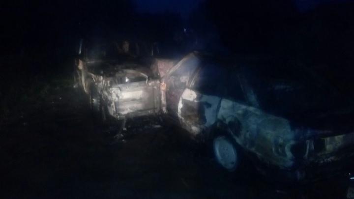 Два пьяных водителя в Онежском районе попали в ДТП, которое окончилось пожаром