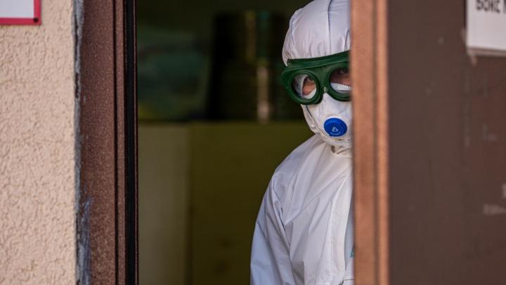За сутки в Новосибирской области зарегистрировано 42 новых случая коронавируса