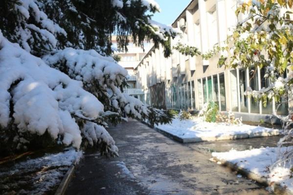 Натела Полежаева отрицала информацию о продаже «Рассвета», однако теперь его продают официально как арестованное имущество