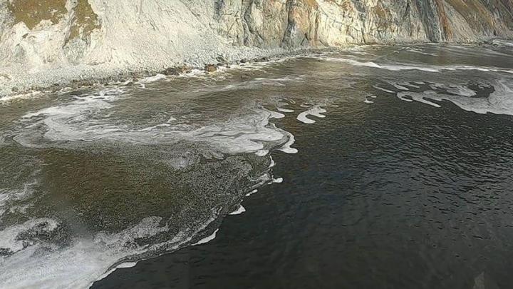 У властей Камчатки появились три версии экологической катастрофы