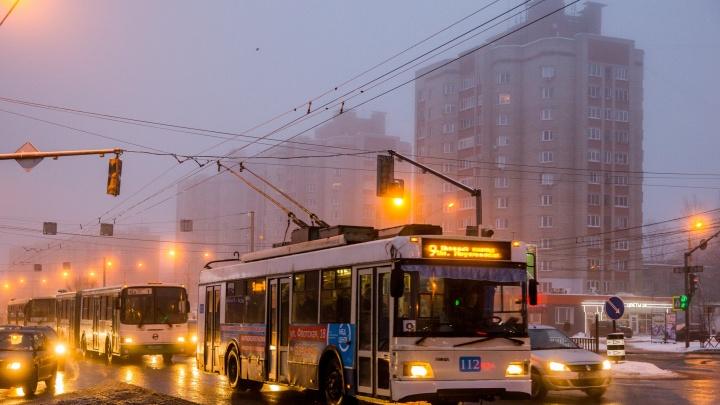 В Ярославле встали почти все троллейбусы