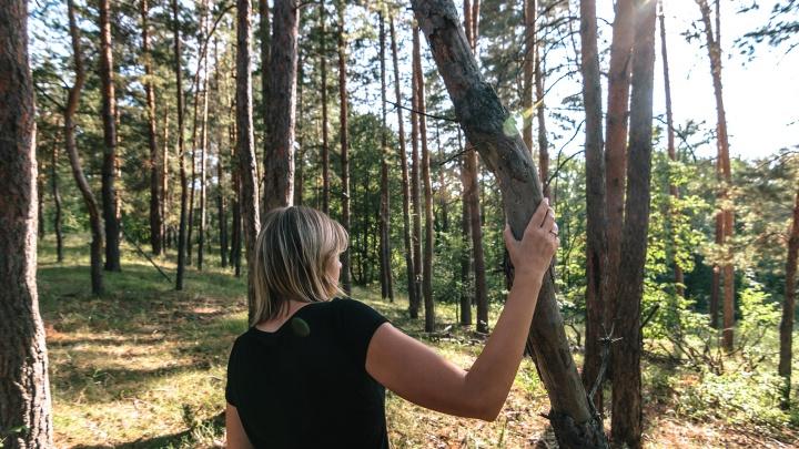 Оштрафуют дважды: жителям Самарской области запретили ходить в лес
