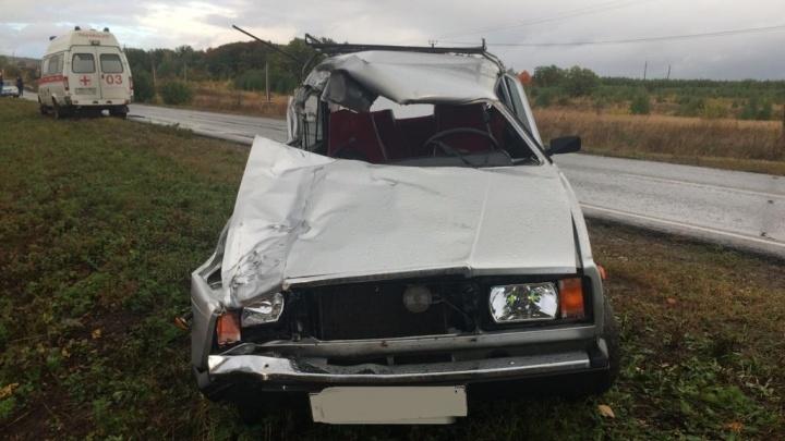 Снесла полмашины: в Самарской области водитель «семерки» сбил корову