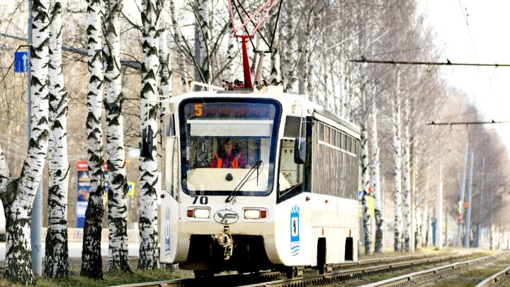 В Ярославле на два дня сократят маршруты трамваев