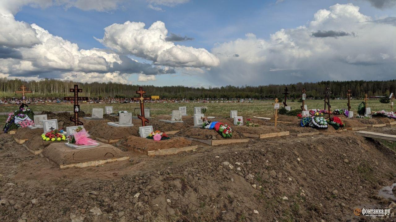 Новое кладбище в Колпино, май 2020 года<br><br>автор фото Павел Каравашкин / «Фонтанка.ру»<br>