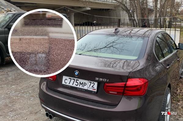Мужчина, чья машина оказалась покрашена, обвиняет «Тюменьгормост» в безответственности