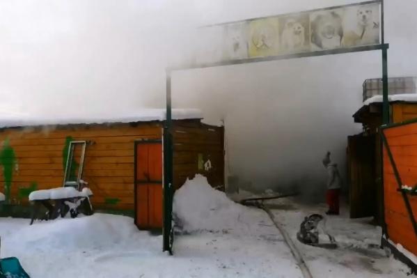 Загорелось одноэтажное деревянное строение на территории питомника