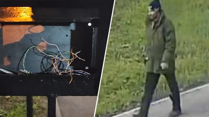 «Украл у всех на виду»: в Ярославле разыскивают домофонного потрошителя. Видео