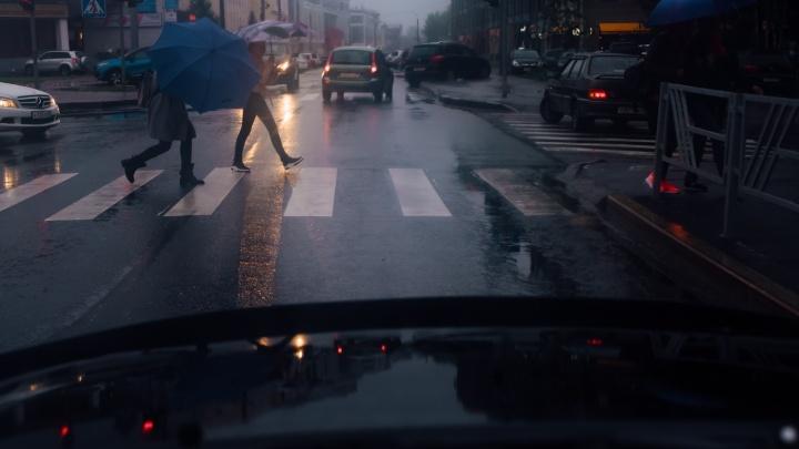 Тепло и дожди: в Северном УГМС рассказали о погоде в ближайшую неделю в Архангельской области