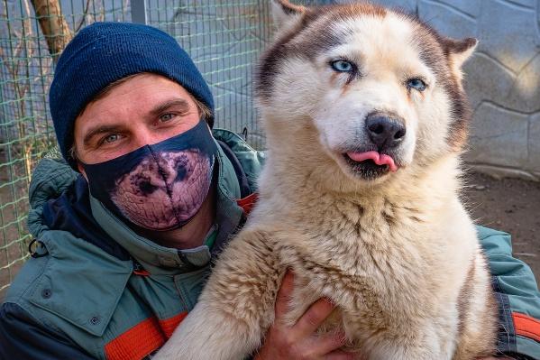 Собаки недоумевают, когда видят своих людей в масках