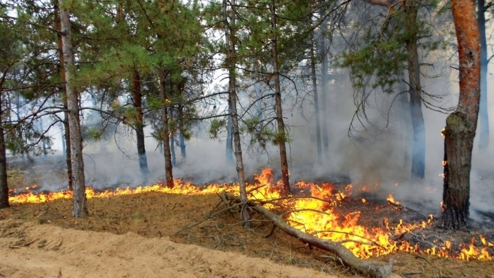 В Ильменском заповеднике и на Тургояке полыхает пожар