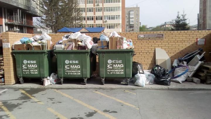 Новосибирск лишился одного из мусорных перевозчиков — теперь некоторые улицы зарастают мусором